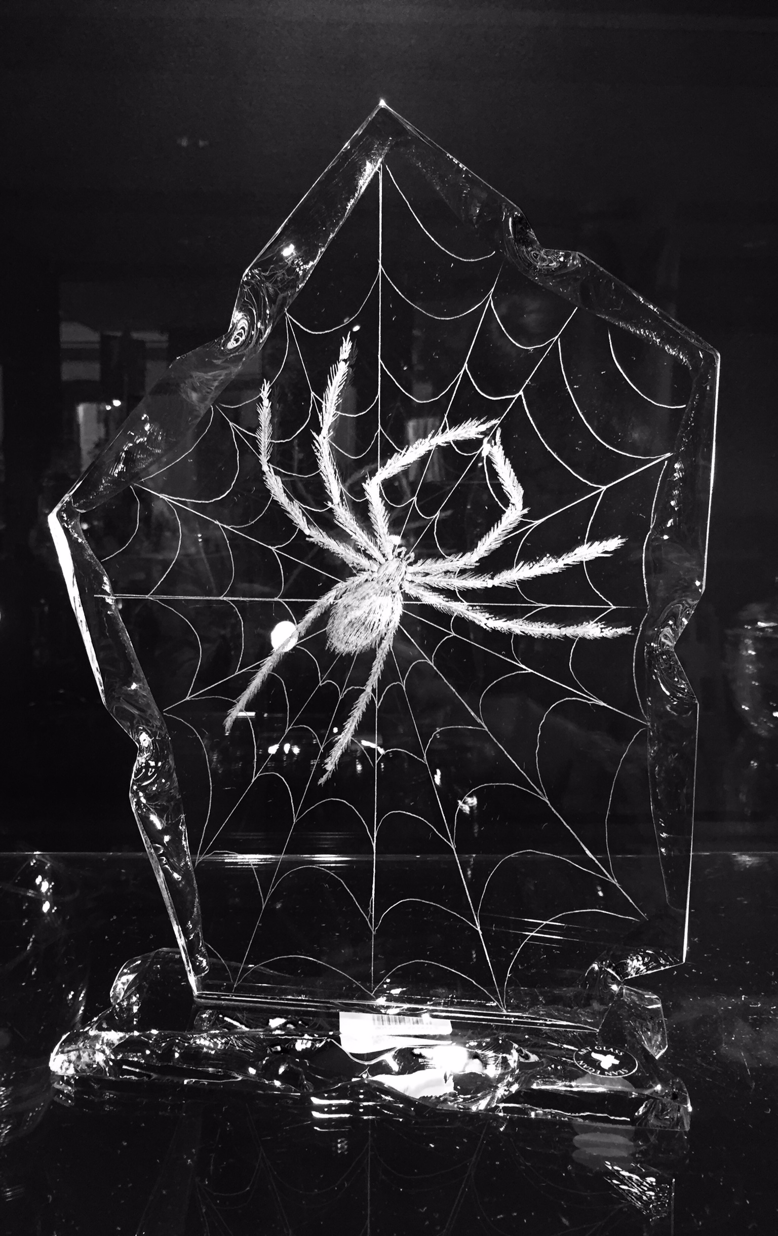 inspiration pieces spider on web